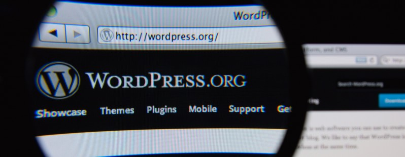 picture of If you use WordPress, you need to know about this button